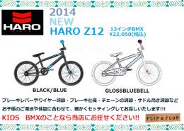 2014HAROZ12