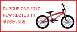 2017newrectus14予約low